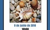 Pedras  002  1 165 100