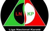 Liga nacional karate 1 160 100