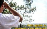 Cartaz voluntariado mata machada 2 1 160 100